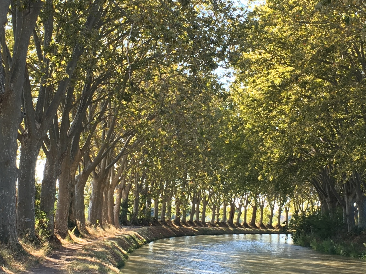 UNESCO France:  6 Days Around the Canal du Midi